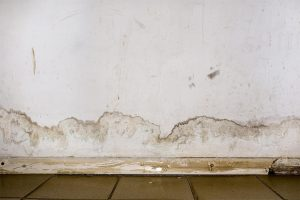 Staining and peeled paint on a water-damaged wall