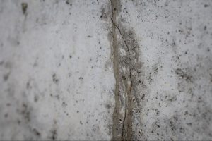 Close-up shot of a leaking foundation crack